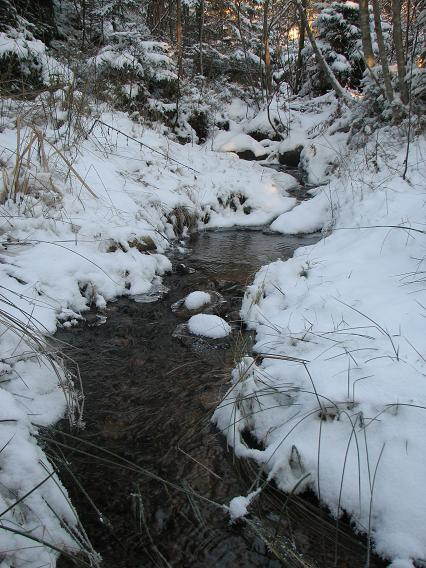 Bäcken rinner för fullt i 11 minusgrader