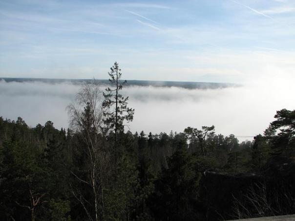Dimma över Bråviken