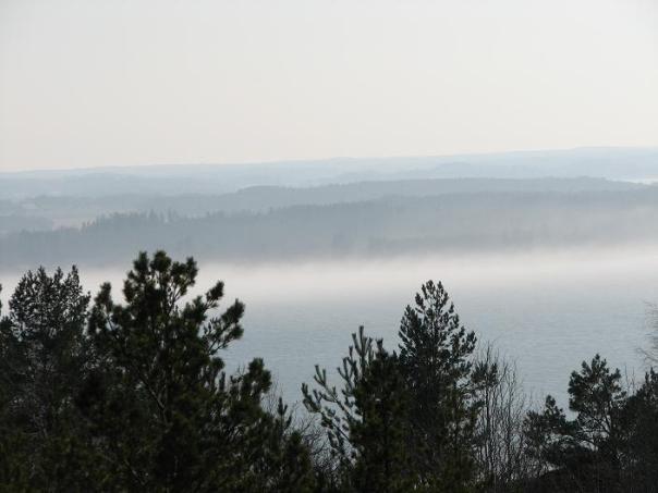Morgondis över Bråviken